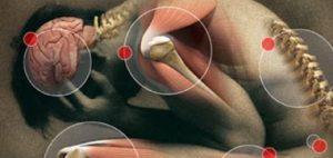 Hondrocream Ingredientes. ¿Tiene efectos secundarios?